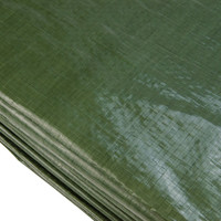 Afdekzeil PE Groen 10x12 Bouwzeil 250gr Polyethyleen