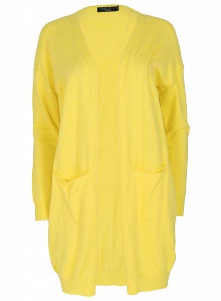 Rebelz Collection Vest Tine geel