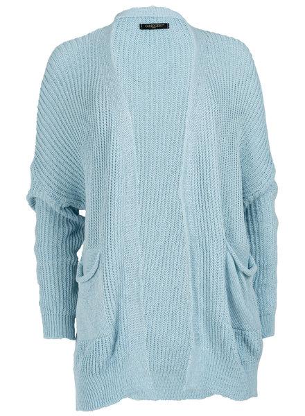 Gemma Ricceri Vest blauw Jessica