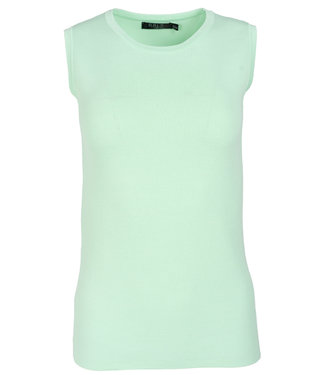 Rebelz Collection Top mintgroen Frannie