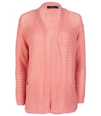 Rebelz Collection Vest roze Trudy