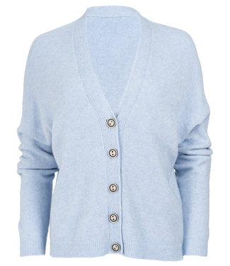Gemma Ricceri Vest lichtblauw Iris