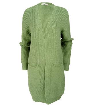 Azzurro Vest groen Micky