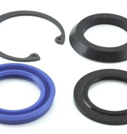 STC2848G POWER STEERING BOX LOWER SEAL KIT