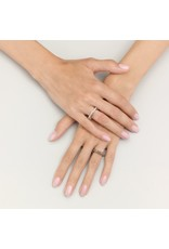 Pomellato Pomellato Iconica 18k Rosegouden Ring met zwarte diamanten pavé gezet