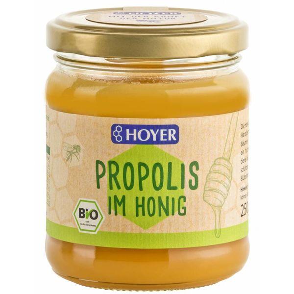 Propolis im Honig 250ml BIO