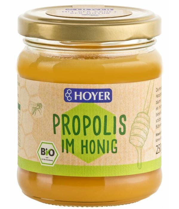 Propolis im Honig 250ml