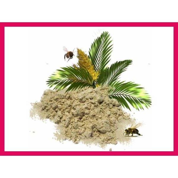 Palmpollen Pulver 30 g