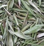 Olivenblätter 25 g