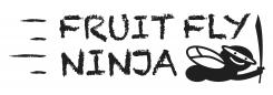 Natuurlijke fruitvliegjes vanger Fruit Fly Ninja