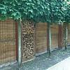 Hardhout: Steenschotten