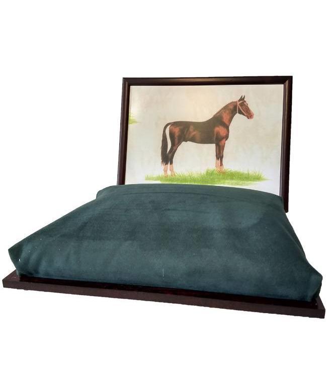 Schootkussen Paard
