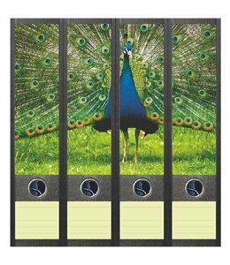 File Art Rugetiket Blauwe Pauw
