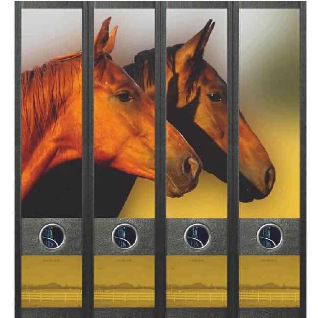 Rugetiket Paarden