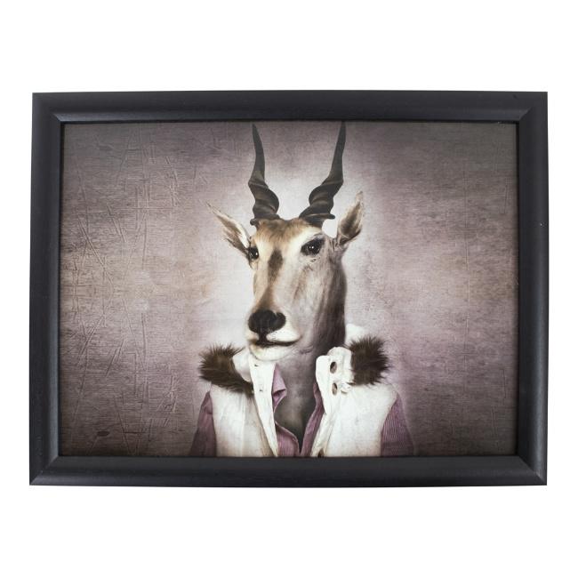 Laptop Kussen Mr. Antilope