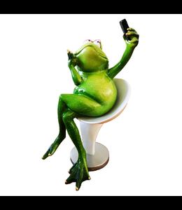 Beeldje Kikker Stoel Selfie