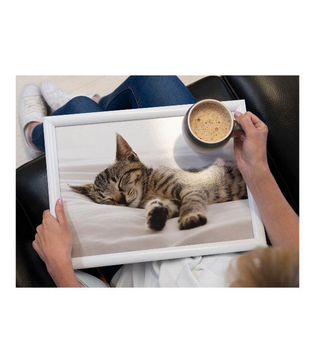 Creative Tops Schootkussen Slapende Kitten