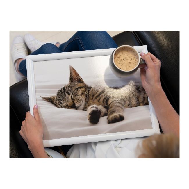 Schootkussen Slapende Kitten