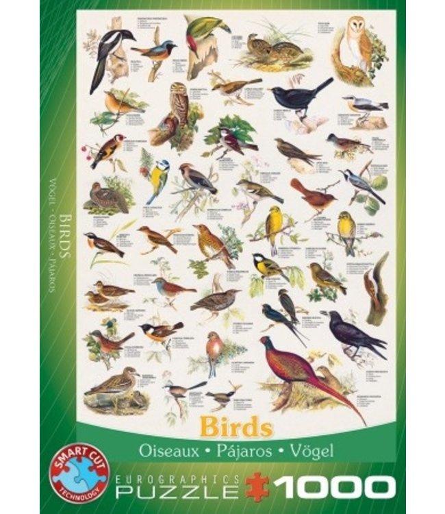 Puzzel - Birds (1000)