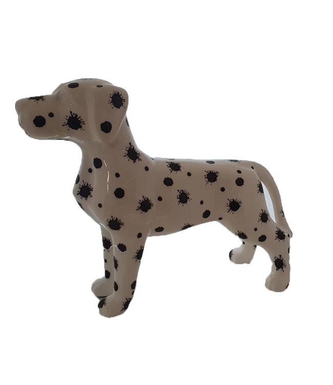 Hond Met Verfspatten XL