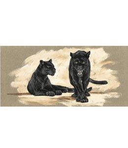 Ingelijste Posters: Zwarte Jaguar