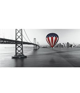 Ingelijste Posters: Luchtballon in USA