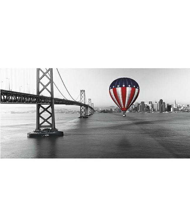 Ingelijste Posters: Luchtballon in USA