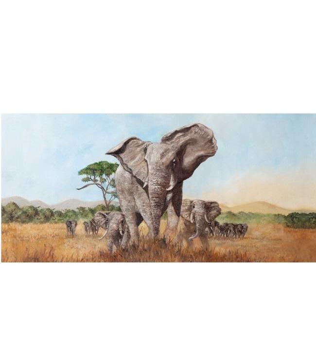 Kunstzinnige Ingelijste Posters: Wilde Olifanten