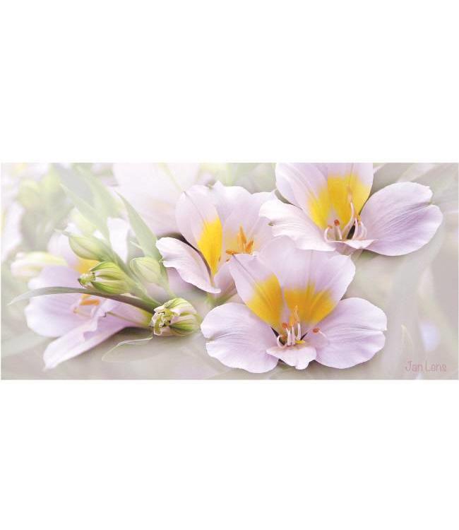 Kunstzinnige Ingelijste Posters: Witte bloemen in bloei