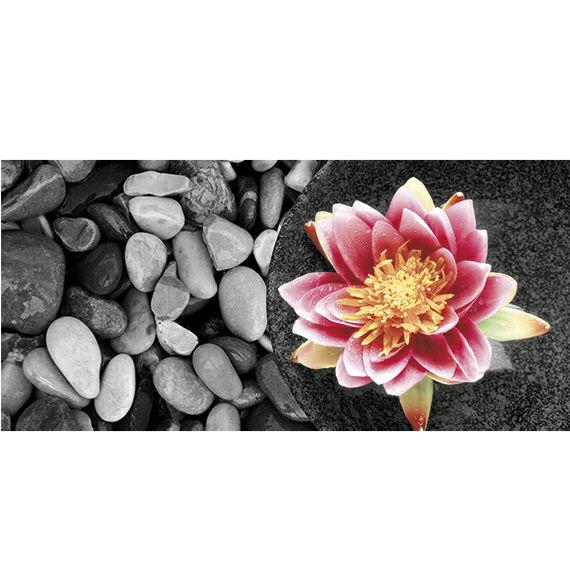 Kunstzinnige Ingelijste Posters: Zen Waterlelie op stenen
