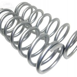 TF015 Heavy Load front springs +2""