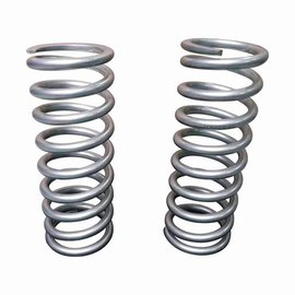 Tf027V Heavy load rear springs +2""