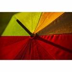 paraplu rainbow