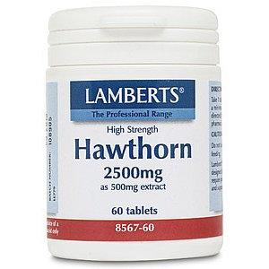 Lamberts Hawthorn (Meidoorn) 60 tabletten