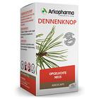 Arkocaps Dennenknop 45 cap