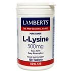 Lamberts L-Lysine 500mg 120 tab