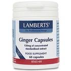 Lamberts Ginger capsules 60 cap