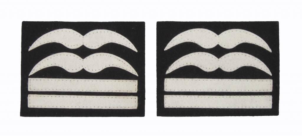 Luftwaffe Oberstleutnant Dienstgradabzeichen Schwingen