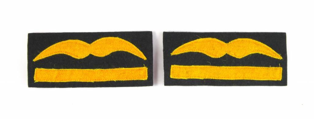 Luftwaffe Generalmajor Dienstgradabzeichen Schwingen