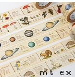 MT washi tape ex encyclopedia marine creature