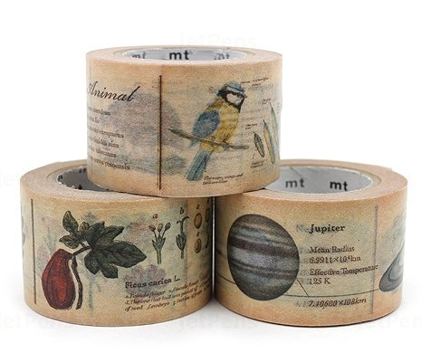 MT washi tape ex encyclopedia chocolate