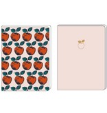 Set notebooks apples