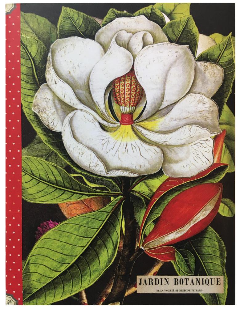 Geïllustreerd petit notebook Fleurs