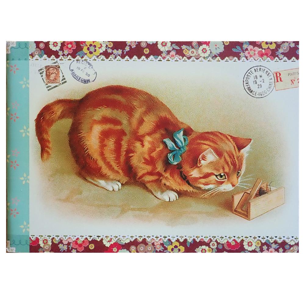 Geïllustreerd petit notebook Chats