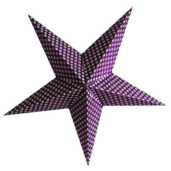 Kerstster purple flower