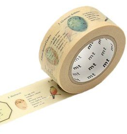 MT  MT masking tape ex bird egg