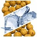 Freezer Bait - Sweet ScopeX