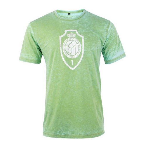 Official T-shirt 'Vintage logo' - groen