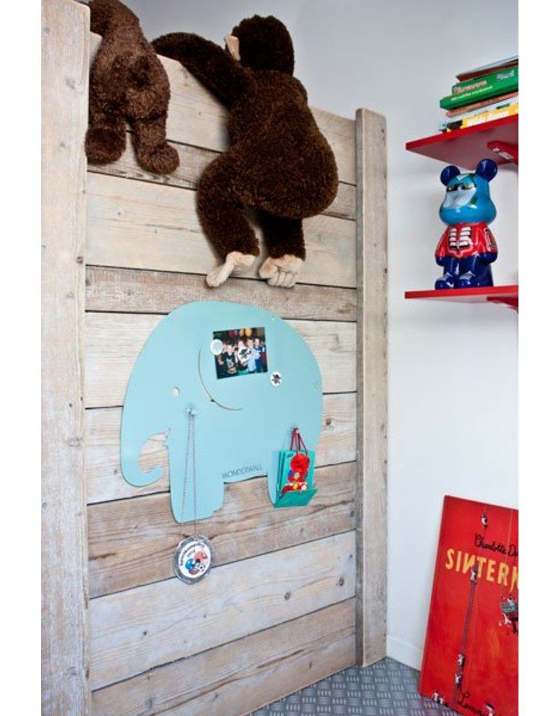 Wonderwall 50 X 60 CM magnetic board elephant