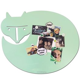 Wonderwall VOS X-LARGE- MINT-